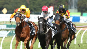 'Got to be in it to win it': last in a bush maiden to Randwick group 2 for 300-1 shot