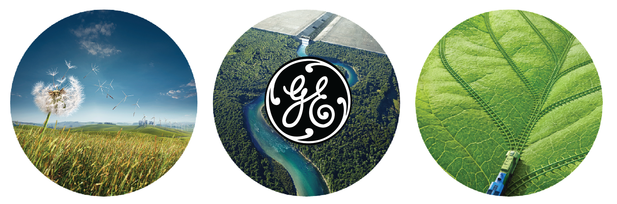 GE Brands as Publishers