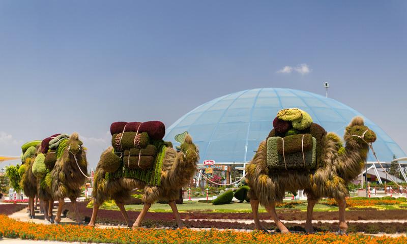 Imaginary Worlds has taken over Atlanta Botanical Garden.