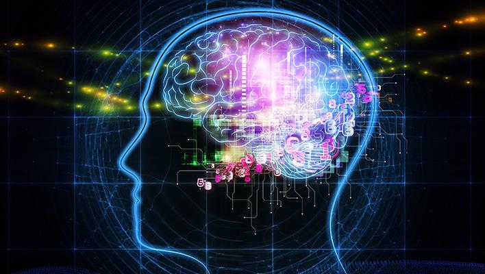 メインビジュアル : 脳科学の知見から、人間のように応用力のあるAIの実現を目指す