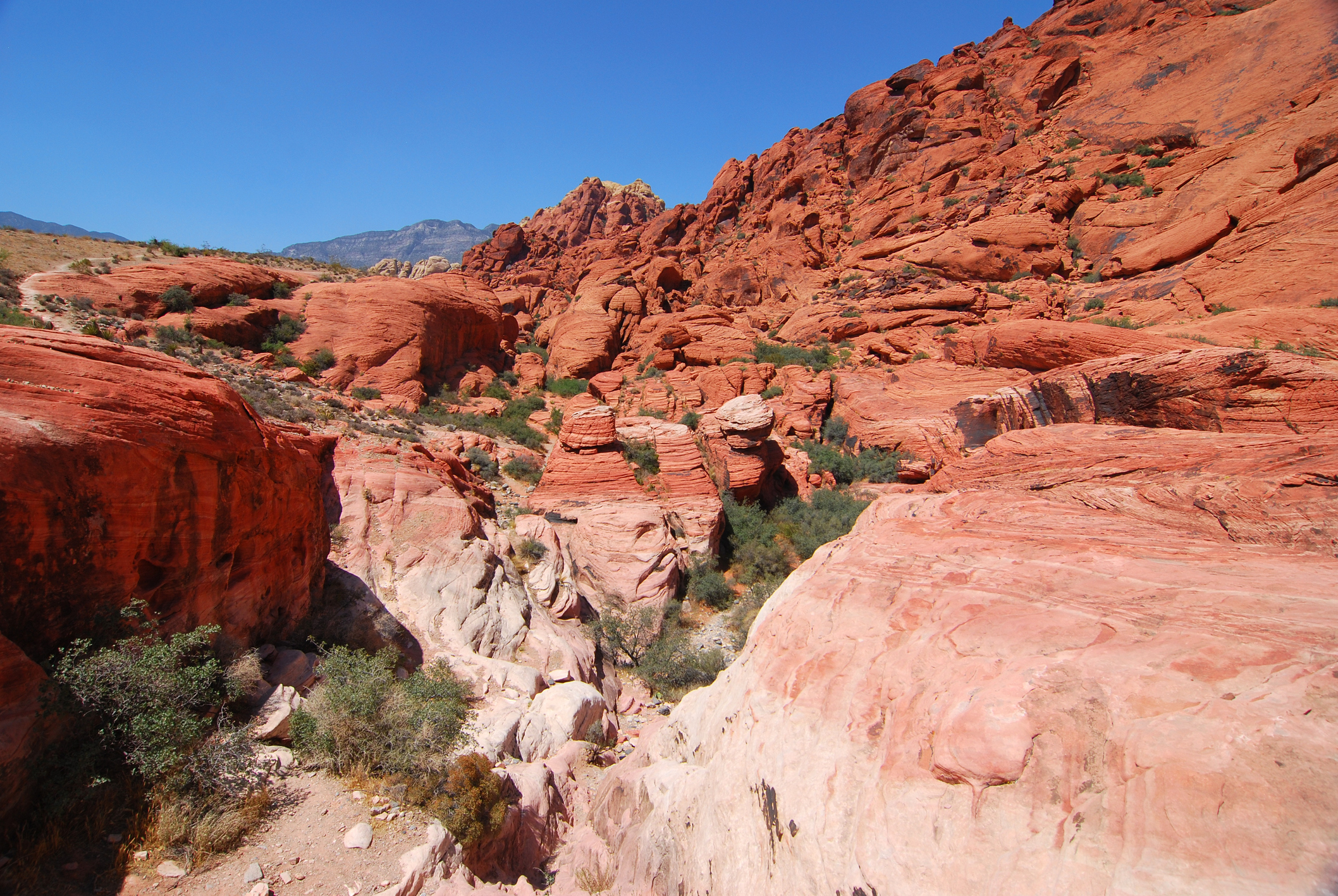 Red Rock Canyon Getty.jpg