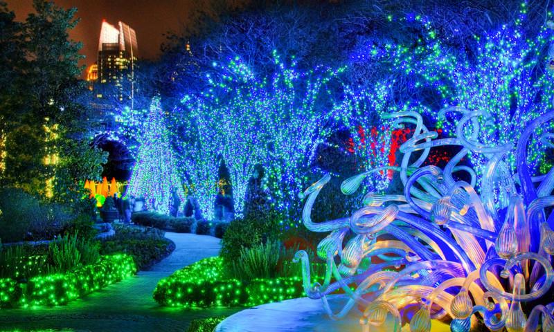 Atlanta Botanical Garden illuminates the season. (Joey Ivansco)