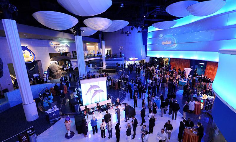 The holiday season takes over Georgia Aquarium for Festival of the SEAson.
