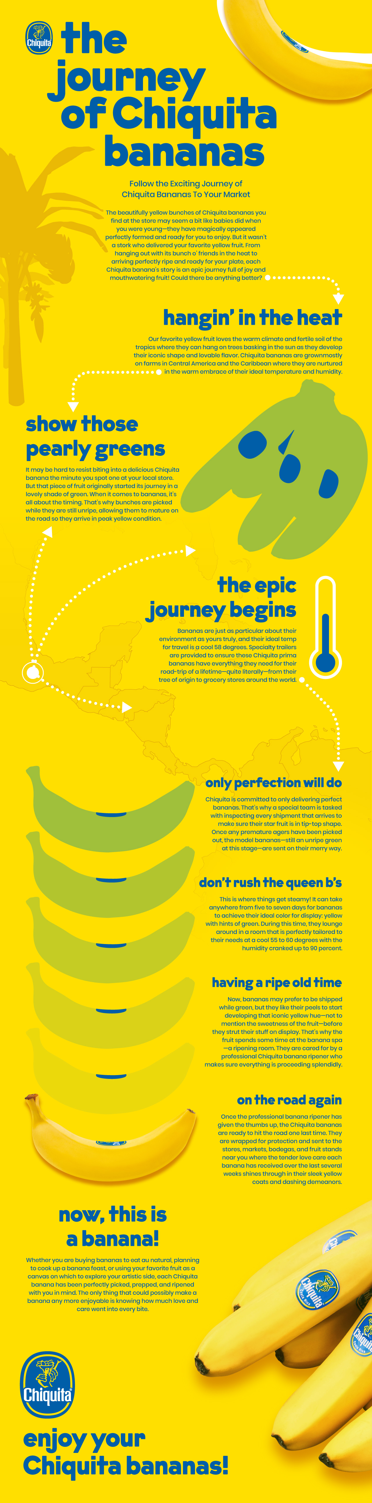 Chiquita-journey-infographic-1.0 (2).jpg