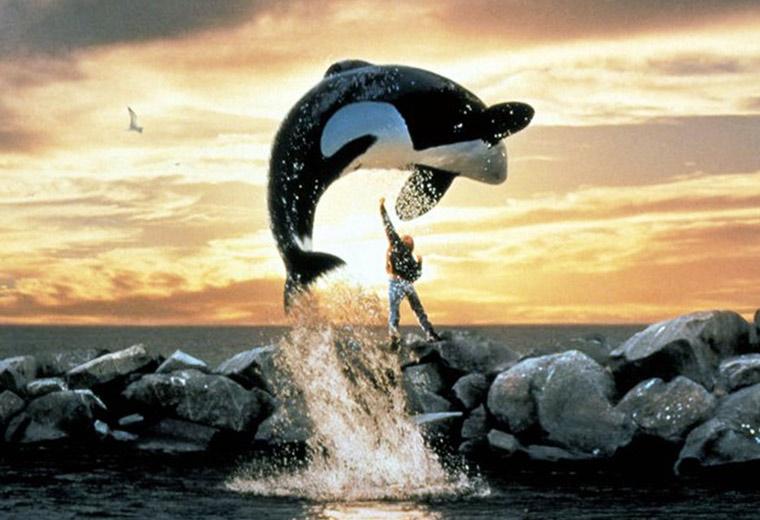 movie-zoo-willy.jpg