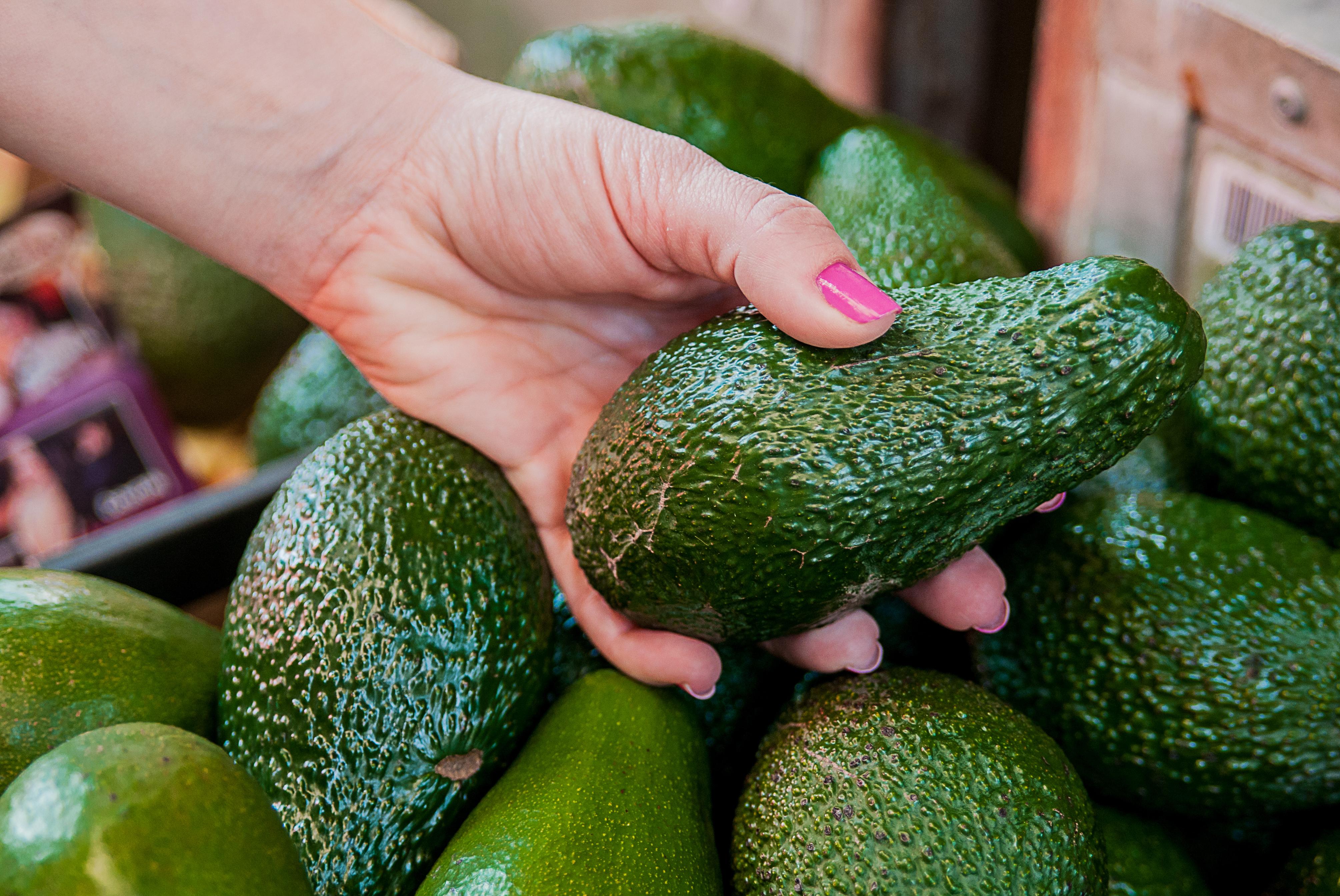 How to pick avocado