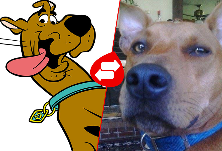 cartoon-dogs-01.jpg