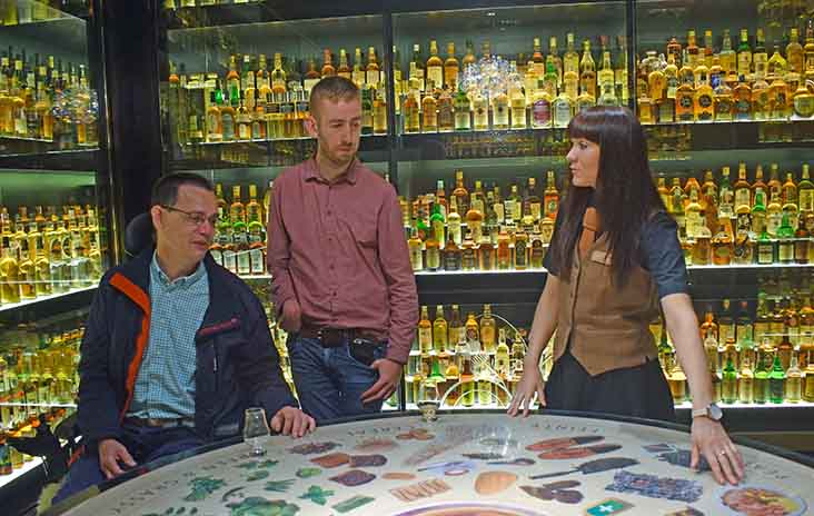 Scotch Whisky Experience -Collection.jpg