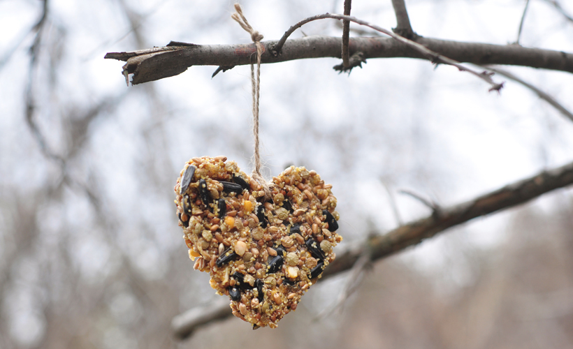 bird-feeder_heart_Snow-Day-Guide-Activities.jpg